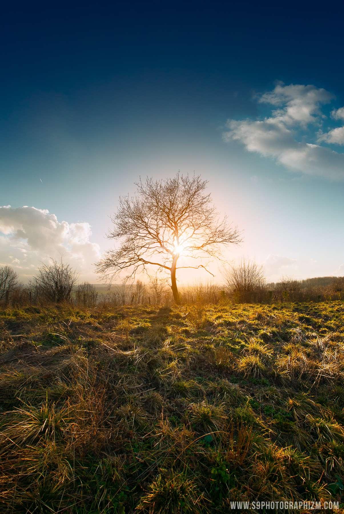 s9 photographizm photographe professionnelle de paysages nature et urbain basée à Lille région hauts de france.