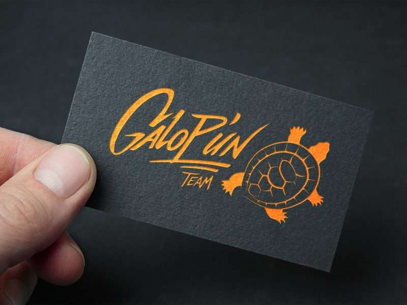 logo identié visuelle graphisme s9photographizm